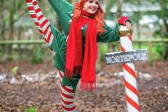 Elf-at-Northpole